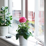 tiny-swedish-apartments3-6.jpg