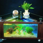 unusual-fish-tanks-ideas1-11.jpg