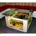 unusual-fish-tanks-ideas1-13.jpg