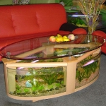 unusual-fish-tanks-ideas1-2.jpg
