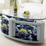 unusual-fish-tanks-ideas1-6.jpg