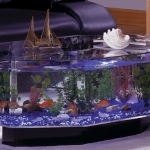 unusual-fish-tanks-ideas1-7.jpg
