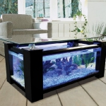 unusual-fish-tanks-ideas1-8.jpg