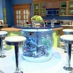 unusual-fish-tanks-ideas2-4.jpg