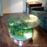 unusual-fish-tanks-ideas3-3.jpg