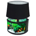 unusual-fish-tanks-ideas6-1.jpg