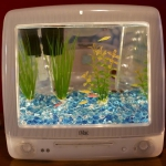 unusual-fish-tanks-ideas7-1.jpg