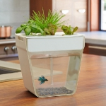 unusual-fish-tanks-ideas8-1.jpg