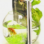 unusual-fish-tanks-ideas8-4.jpg