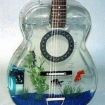 unusual-fish-tanks-ideas8-5.jpg