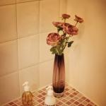 update-parisian-studio-in-indian-style-bathroom3.jpg