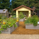 vegetable-garden-ideas1-10.jpg