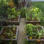 vegetable-garden-ideas1-8.jpg