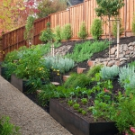vegetable-garden-on-slope-ideas2.jpg