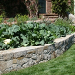 vegetable-garden-ideas3-6.jpg