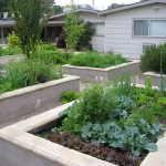vegetable-garden-ideas4-3.jpg