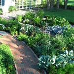 vegetable-garden-ideas7-1.jpg