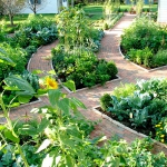 vegetable-garden-ideas7-3.jpg