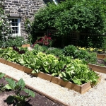 vegetable-garden-paths-ideas11.jpg