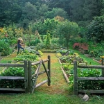 vegetable-garden-paths-ideas9.jpg