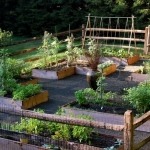 vegetable-garden-fence-ideas2.jpg