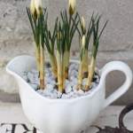 vintage-easter-decorations-tableware3-2