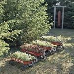vintage-garden-pots1-11.jpg
