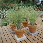 vintage-garden-pots2-6.jpg