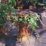 vintage-garden-pots3-3.jpg