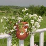 vintage-garden-pots4-6.jpg