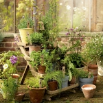 vintage-garden-pots6-1.jpg