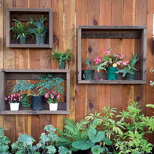 Цветы на заборе на даче своими руками