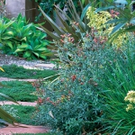 wild-garden-inspiration-flowers15.jpg