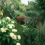wild-garden-inspiration-flowers2.jpg