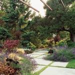 wild-garden-inspiration-herbs3.jpg