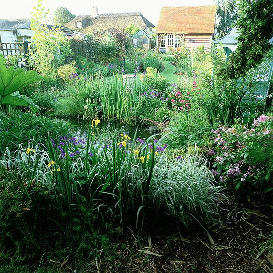 Wild Backyard Herbs : wildgardeninspirationherbs1jpg