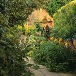 wild-garden-inspiration-naturalness2.jpg