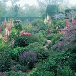 wild-garden-inspiration-naturalness4.jpg
