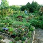 wild-garden-inspiration-secret-nook3.jpg