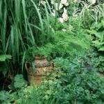 wild-garden-inspiration-secret-nook4.jpg