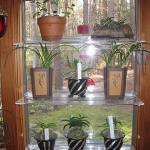 window-shelves-design-ideas1-3.jpg