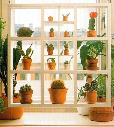 Фото полок для цветов на окно