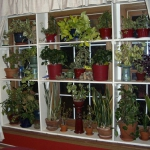 window-shelves-design-ideas2-3.jpg