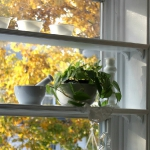 window-shelves-ideas-for-plants2-1.jpg
