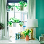 window-shelves-ideas-for-plants2-4.jpg
