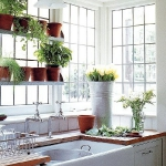 window-shelves-ideas-for-plants3-1.jpg
