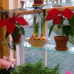 window-shelves-ideas-for-plants4-4.jpg