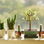 windowsill-decorating-ideas-plants1.jpg