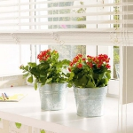 windowsill-decorating-ideas-plants9.jpg