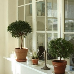 windowsill-decorating-ideas15.jpg